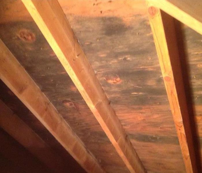 Mold in a Sunbury, Ohio Home Before