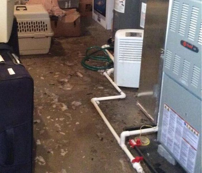 Sewage Flood in a Delaware Home Before