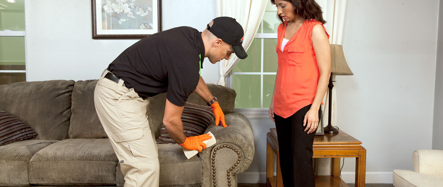 Westerville, OH carpet upholstery cleaning