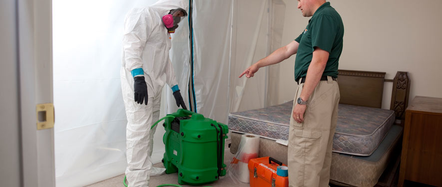Westerville, OH mold removal process